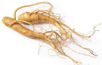 Panax ginseng is a premature ejaculation pill ingredients